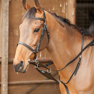 All Weather Bridle with reins